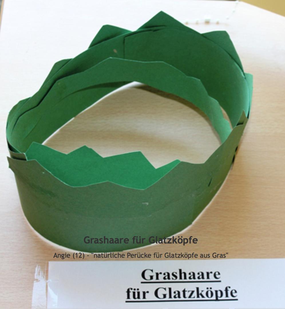 Bild von Grashaare für Glatzköpfe